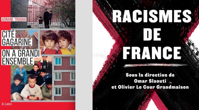 Deux livres pour comprendre la France plurielle
